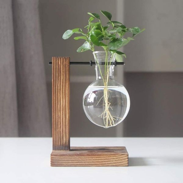 Magiin Plant Terrarium Transparent with Wooden Stand