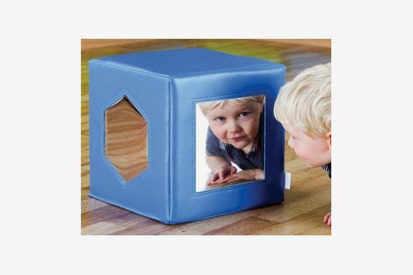 Fledglings Mirror Cube