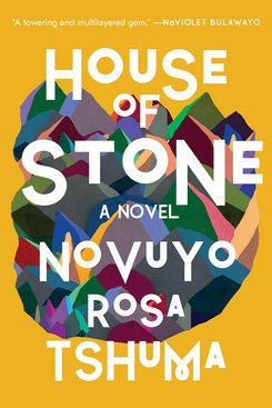 House of Stone, by Novuyo Tshuma