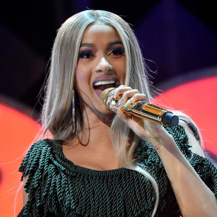 Cardi B Dog: Cardi B Slams Tomi Lahren In Feud Over Government Shutdown