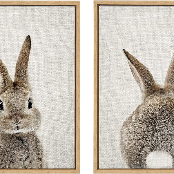 Kate and Laurel Sylvie Bunny Framed Canvas Wall Art, by Amy Peterson, 18x24 Inches
