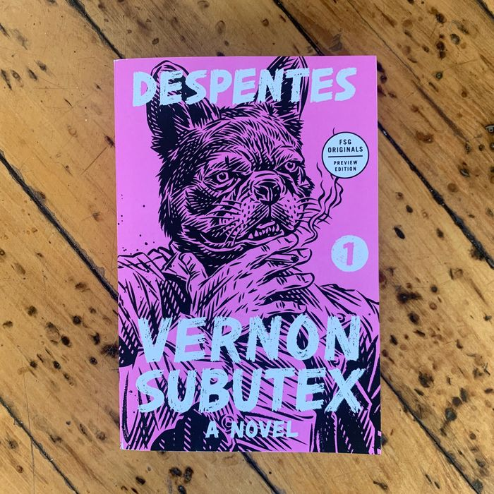 Vernon Subutex 1: A Novel by Virginie Despentes