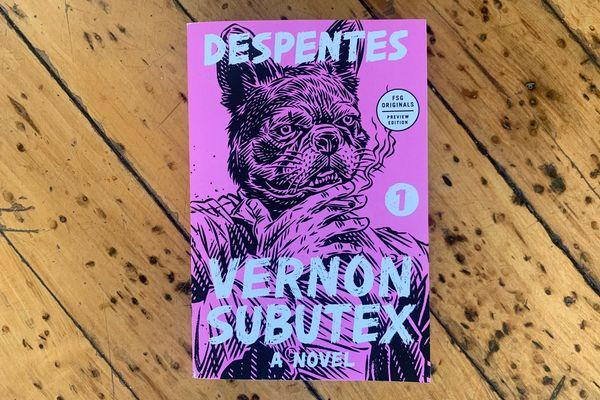 Vernon Subutex 1: A Novel by Virginie Despentes