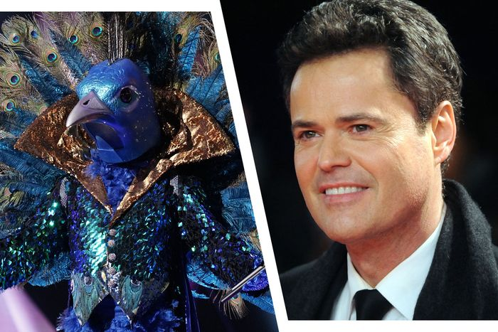 The Peacock is … Donny Osmond?