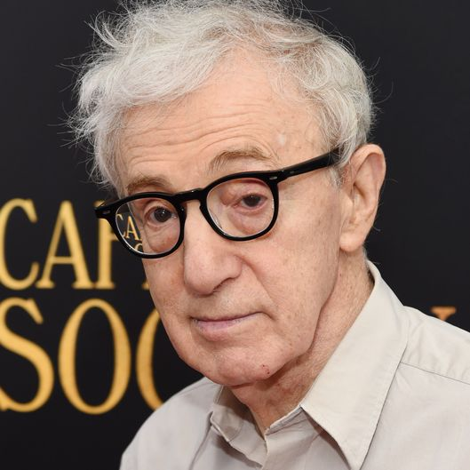 Image result for woody allen 2016