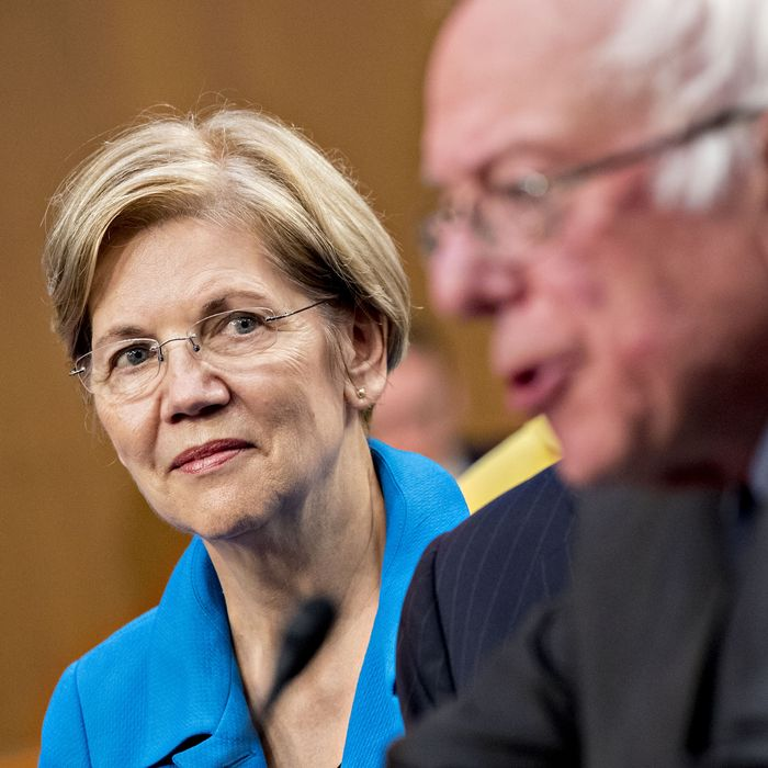What 'Lanes' Will the 2020 Democratic Candidates Run In?