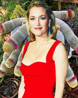 Gillian Anderson, just having a nice time with this beautiful cactus.