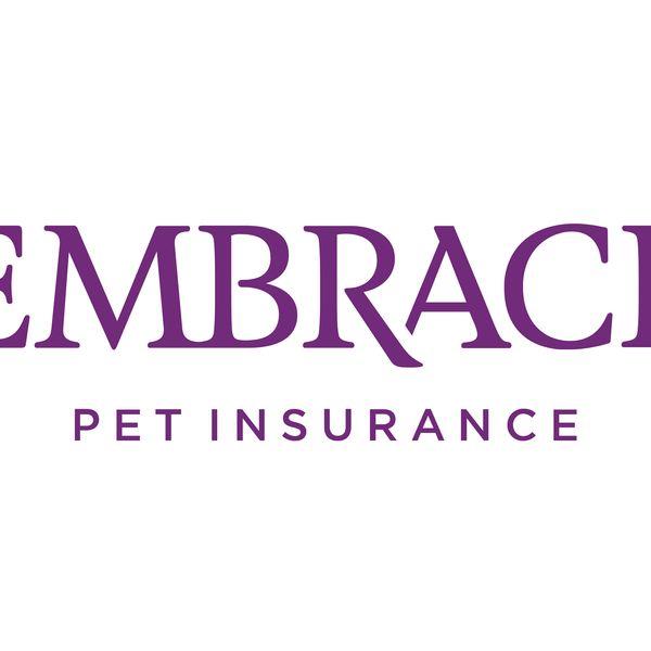 Adoptez l'assurance pour animaux de compagnie