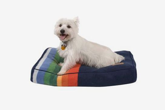 Crater Lake Small Pendleton Pet Bed