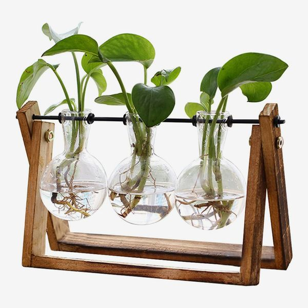 XXXFLOWER Plant Terrarium with Wooden Stand, Air Planter Bulb Glass Vase Metal Swivel Holder Retro Tabletop for Hydroponics