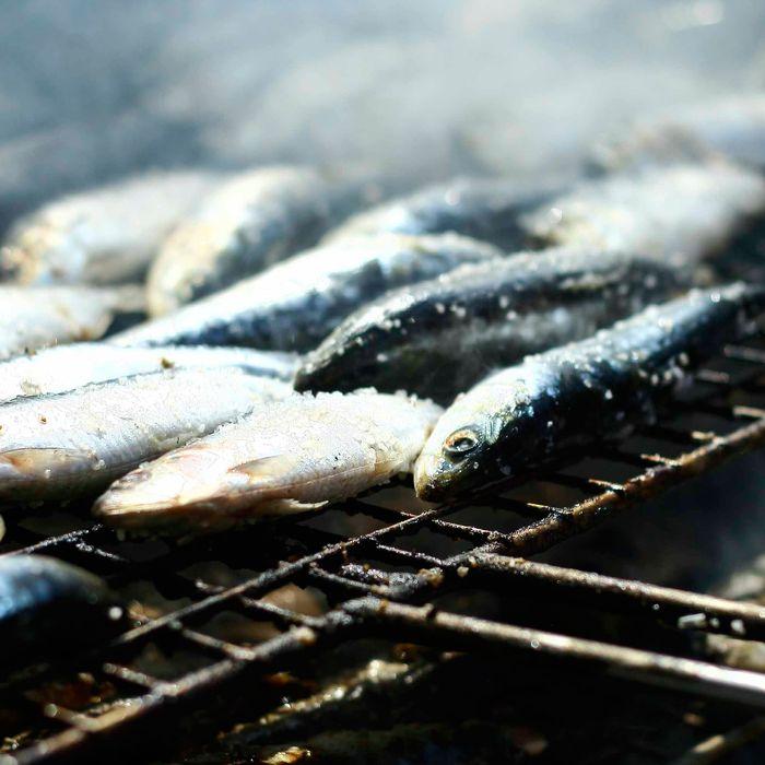Save our sardines.