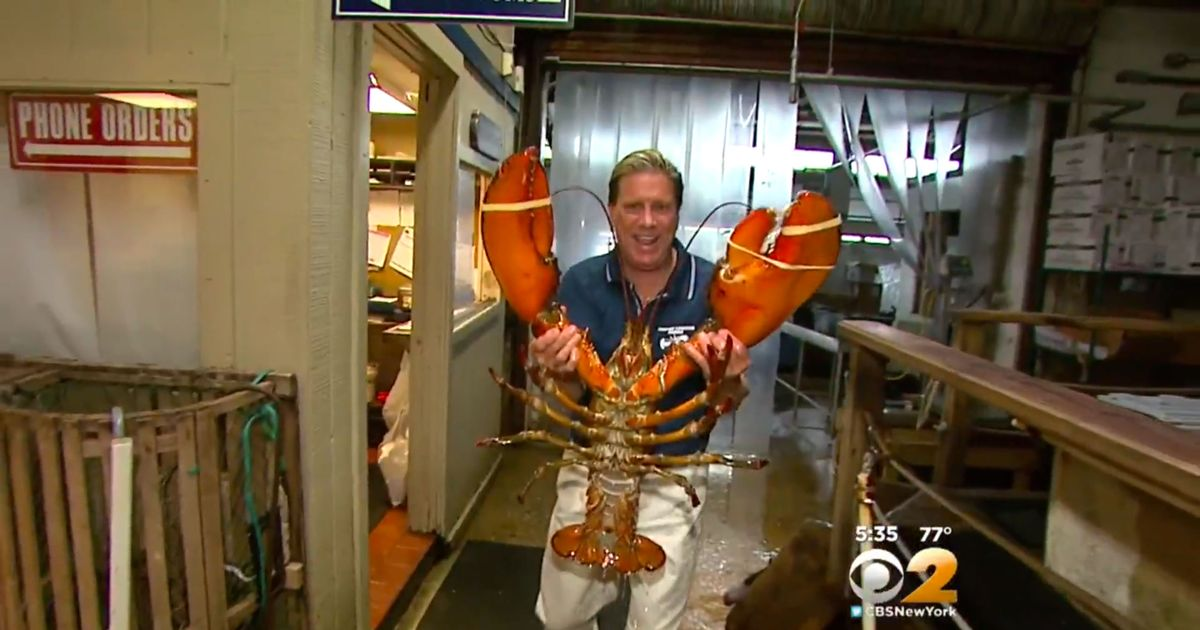 Restaurant Owner Won't Let Anyone Eat His 23-Pound Lobster