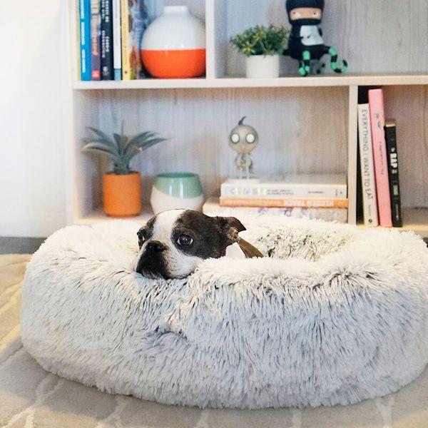 Shag Donut Round Dog Bed Luxury Plush Cuddler Pillow