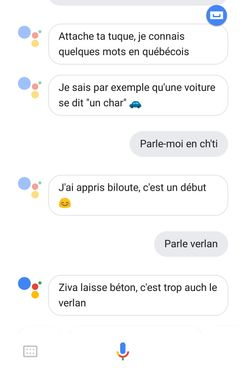 A chat proceeding between the author and Google Assistant in French, showing the Google Assistant's knowledge of French dialects.