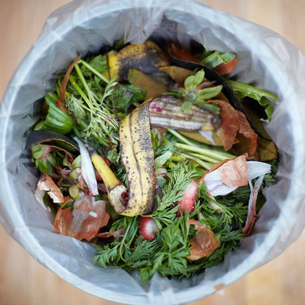 United Airlines Has Figured Out a Way to Turn Food Waste Into Fuel