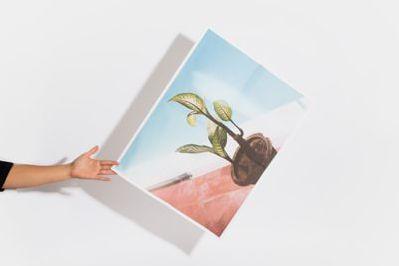 Parabo Press Gift Card