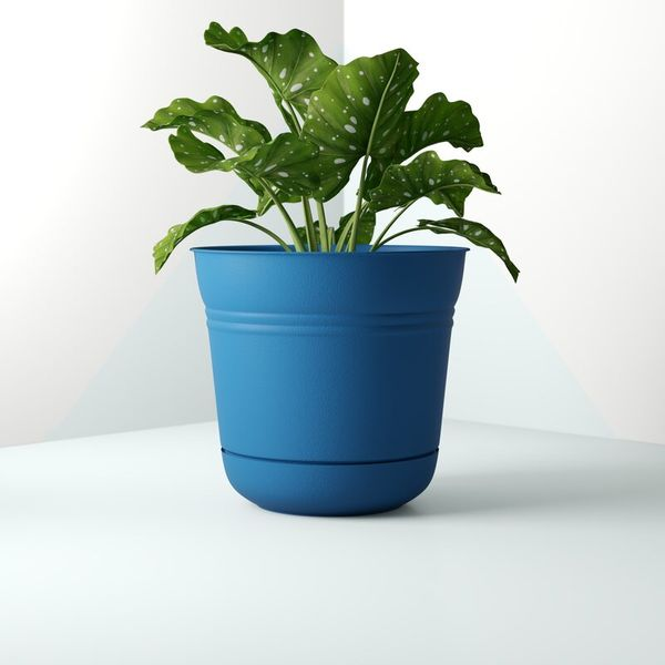 Dundee Plastic Pot Planter