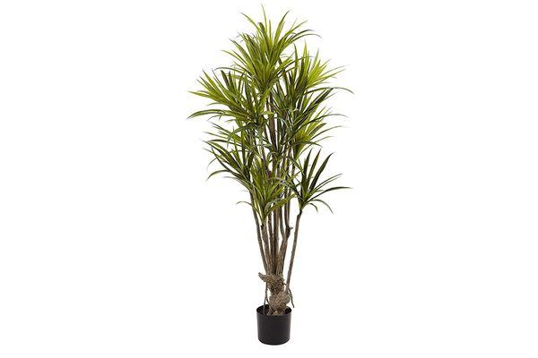Nearly Natural Dracaena Silk Tree