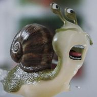 Watch Escargore, the Oddly Cute Horror Film About Snails Trapped in a Kitchen