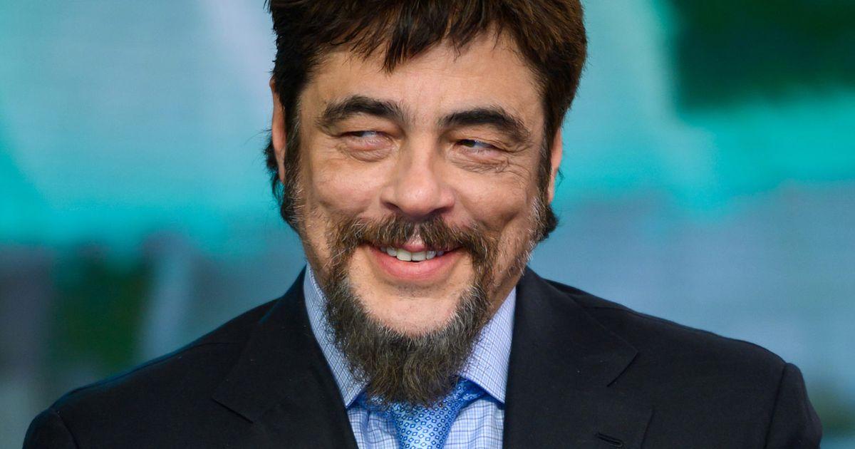 Benicio Del Toro Will Play a Thieving Fox in Dora The Explorer Movie