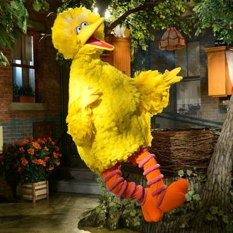 Big Bird knows how to get, how to get to Sesame Street.