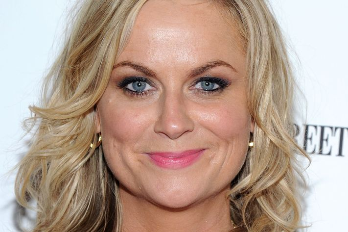 Amy Poehler is also unsure, MTV. Photo: Ilya S. Savenok/Getty Images