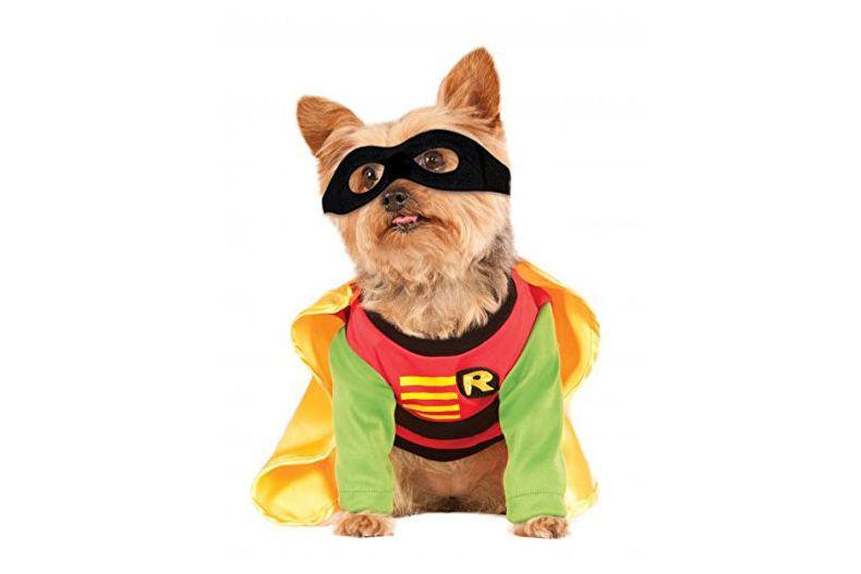 Teen Titans Pet Costume, Robin