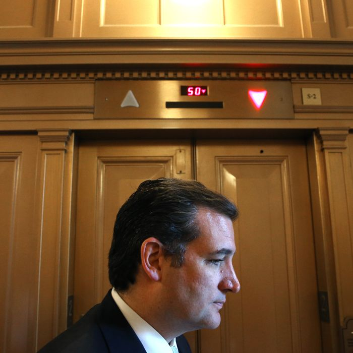 WASHINGTON, DC - DECEMBER 12: Sen. Ted Cruz (R-TX) waits for an elevator off the Senate floor at the US Capitol, on December 12, 2013 in Washington, DC. The Senate worked through the night debating President Obama's Circuit Court nominations. (Photo by Mark Wilson/Getty Images)