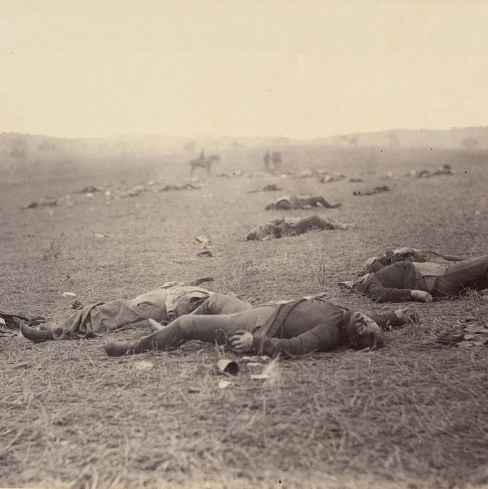 Image result for the agony of a young man's American civil war death