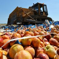 Russia's Food Destruction Is Totally Out of Control