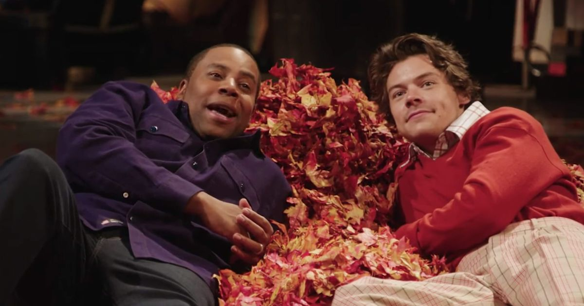 Harry Styles's SNL Promo Lets You Fantasize About Lying in a Leaf Bed With Harry Styles - Vulture