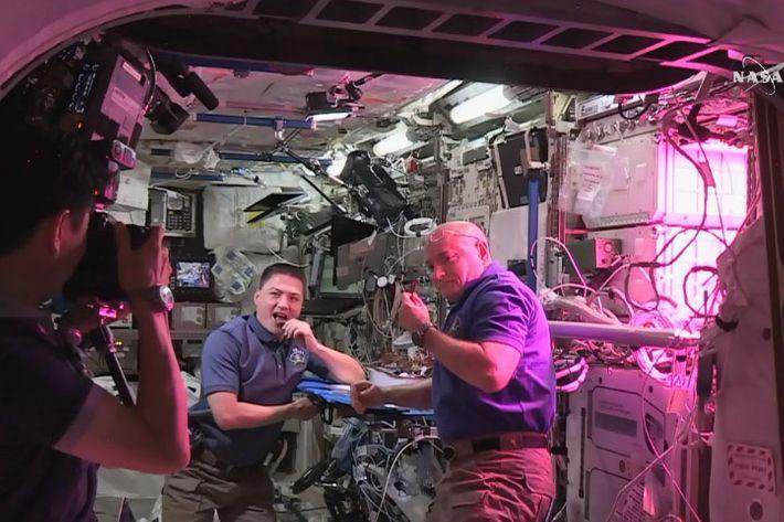 Astronauts Scott Kelly and Kjell Lindgren just munching on some lettuce.