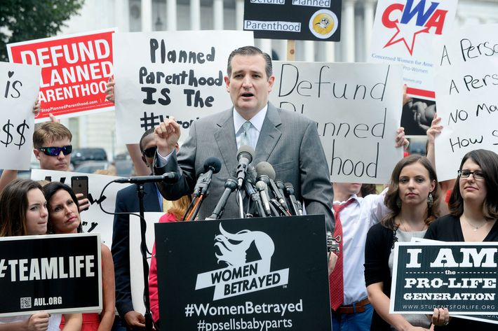 Senator Ted Cruz speaks during an anti-aobrtion rally in front of the U.S. Capitol on July 28, 2015.