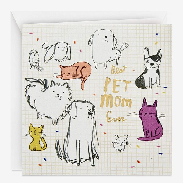 Hallmark Studio Ink Mothers Day Card from Dog or Cat