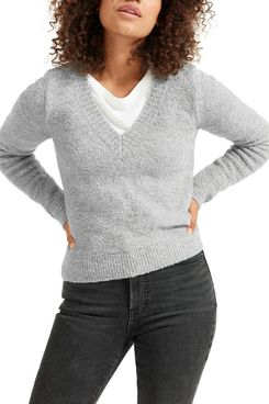 Everlane The Teddy Wool Blend V-Neck Sweater
