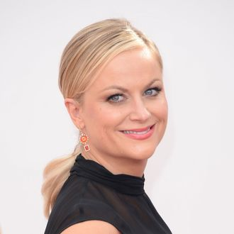 Actress Amy Poehler arrives at the 65th Annual Primetime Emmy Awards held at Nokia Theatre L.A. Live on September 22, 2013 in Los Angeles, California.