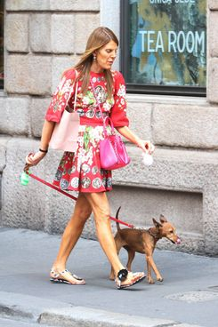 Anna Dello Russo strolling in Milan.<P>Pictured: Anna Dello Russo<P><B>Ref: SPL800137  140714  </B><BR/>Picture by: Antonella Foglia / Splash News<BR/></P><P><B>Splash News and Pictures</B><BR/>Los Angeles:	310-821-2666<BR/>New York:	212-619-2666<BR/>London:	870-934-2666<BR/>photodesk@splashnews.com<BR/></P>