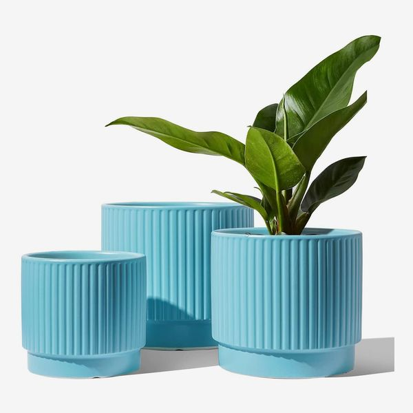 LE TAUCI Plant Pots with Drainage Holes, 8+6.5+5.5 Inch Ceramic Outdoor Pots