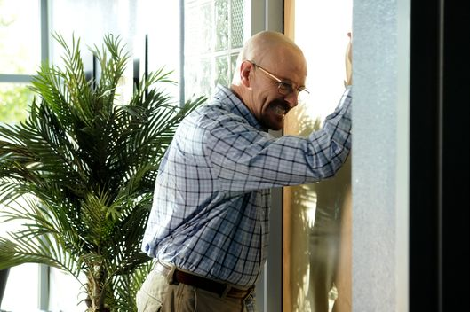 Walter White (Bryan Cranston)  - Breaking Bad - Season 3, Episode 4.