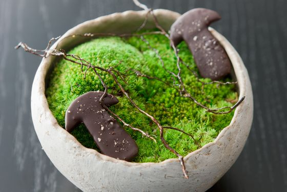 Chocolate and cep mushroom and cinnamon branches.