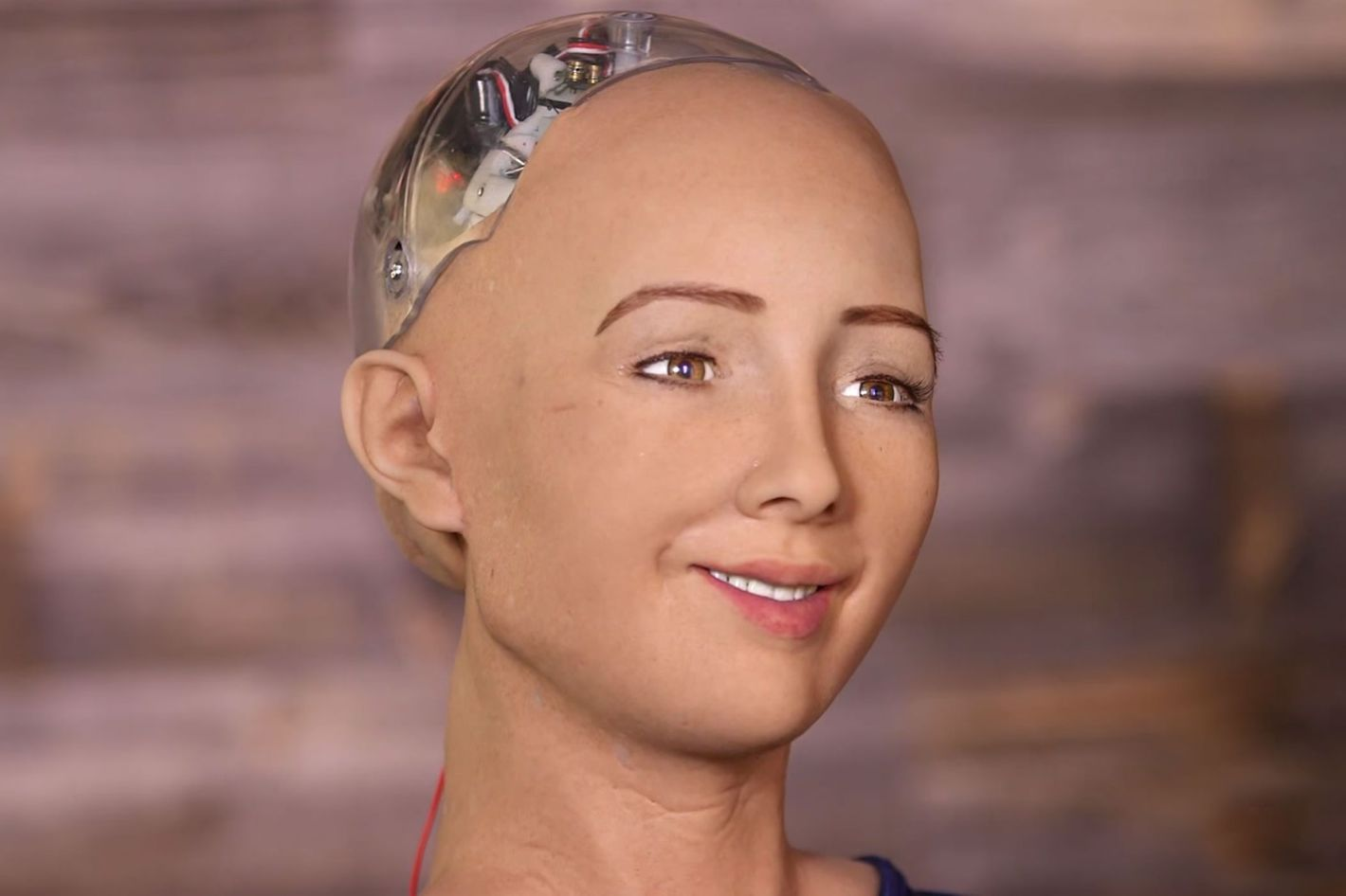 Sophia, robot đầu tiên có quyền công dân nói gì khi tới Việt Nam?
