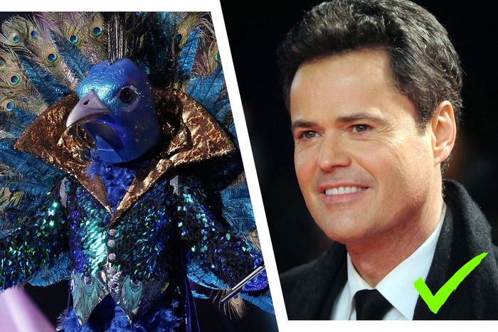 Confirmed: The Peacock is Donny Osmond!