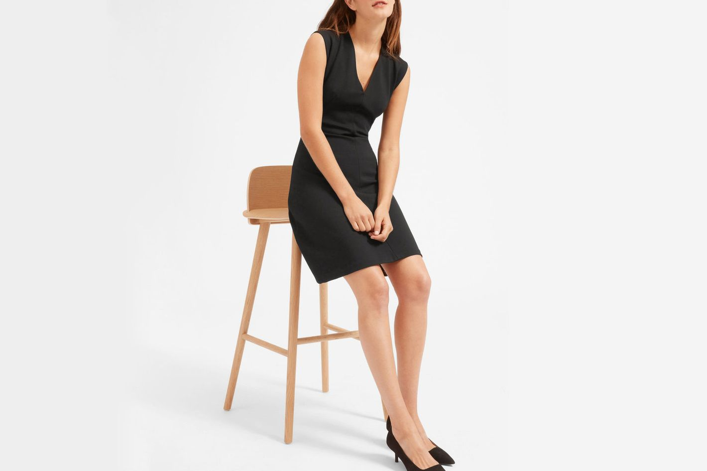 Everlane The Sleeveless V-Neck Flare Dress
