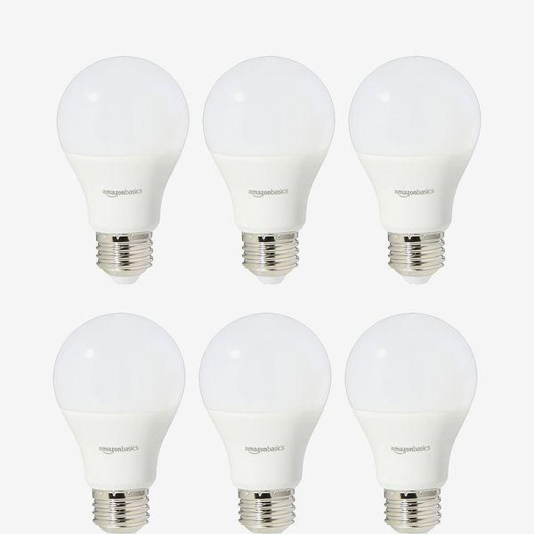 AmazonBasics LED Light Bulbs 2-Pack