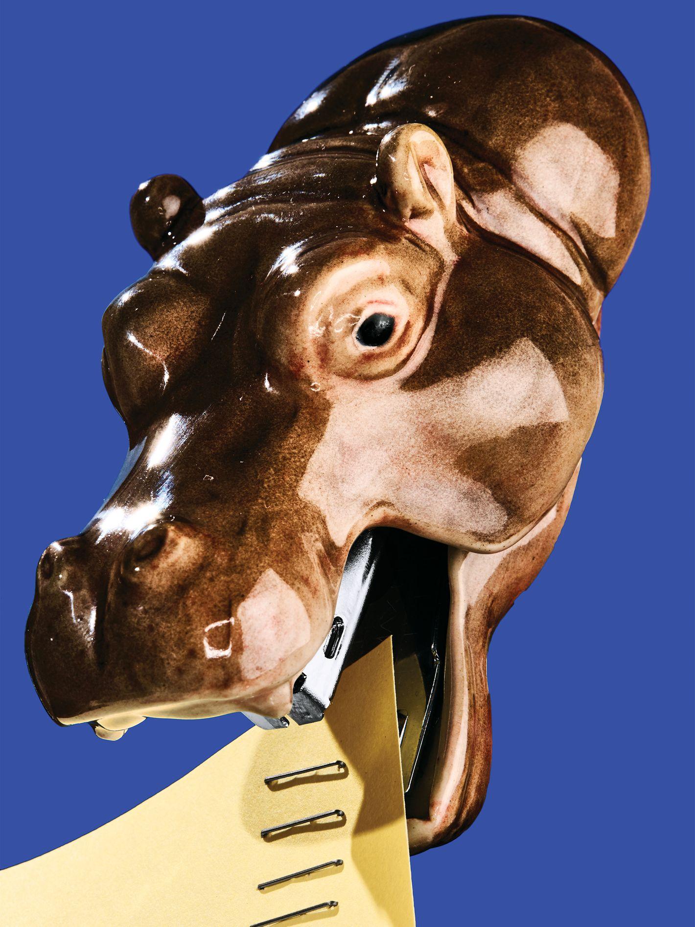 Agrafeuse hippopotame Klima