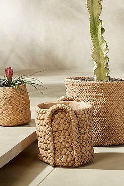CB2 Cement Basket Planters