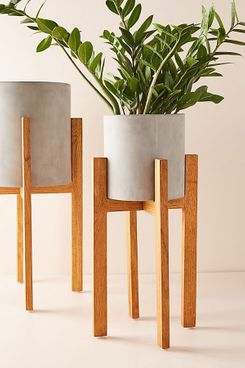 Cement Plant Stand