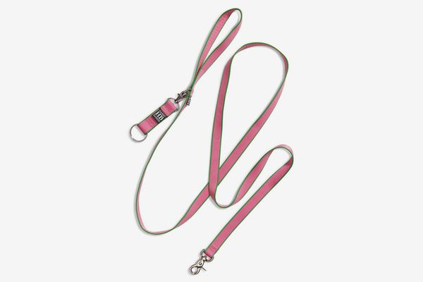 Harry Barker Chelsea Dog Leash (Pink/Green)
