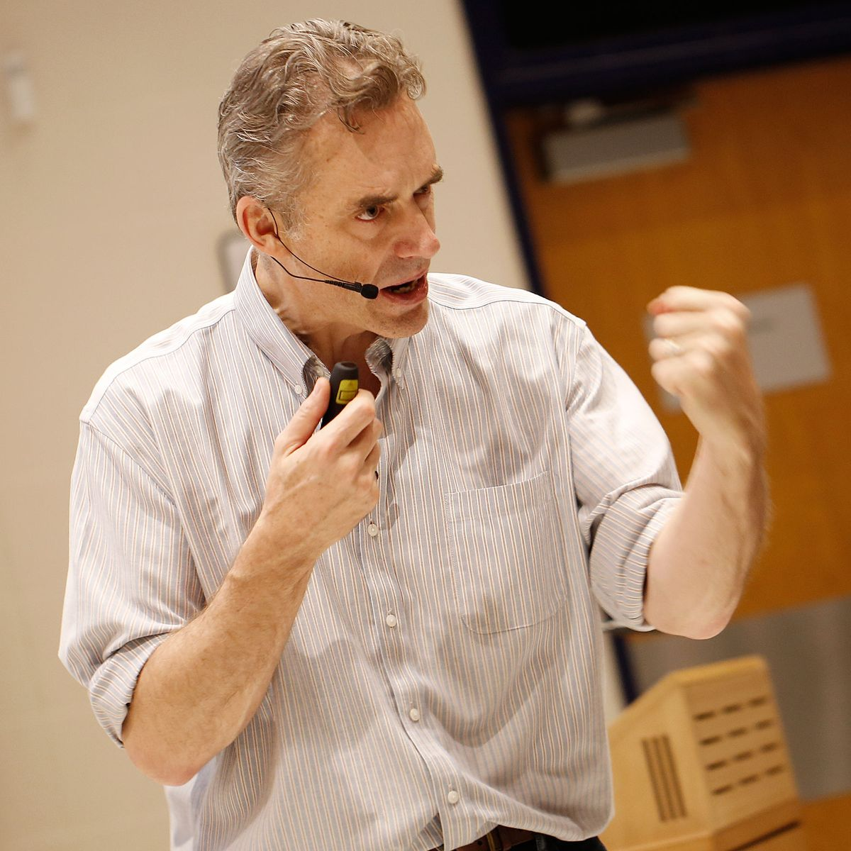 Espectador importante vía  Jordan Peterson Does Not Support 'Equality of Opportunity'