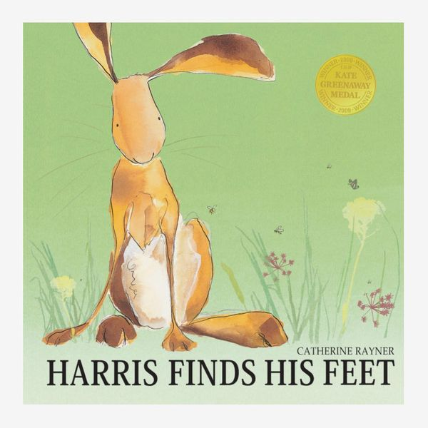 'Harris Finds His Feet' by Catherine Rayner